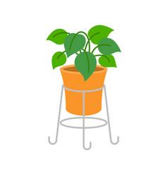 Ornamental plants flat design vector