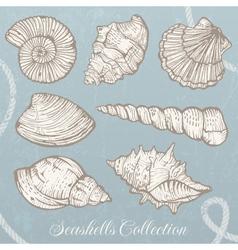 Seashells collection vector image