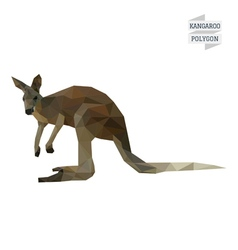 Kangaroo polygon vector