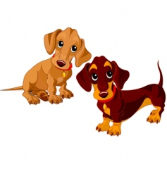 Dachshunds vector