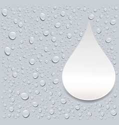 Gray water droplets background with place for text vector