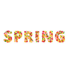 spring lettering with flowers vector image vector image