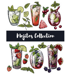Set of six colorful sketches of different mojito vector
