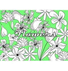 Flowers coloring book vector