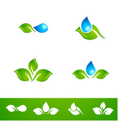leaf and water drop logo set vector image