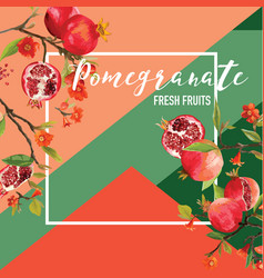 Tropical pomegranate fruits and flowers vector