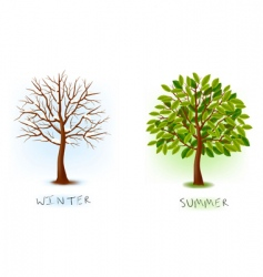 Winter and summer trees vector