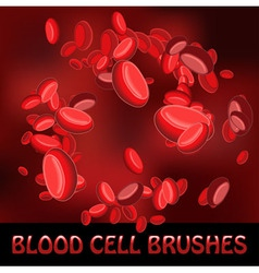 blood cell brushes vector image