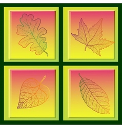 Set of four cards with colored autumn leaves vector image
