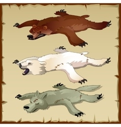 Skins set of forest animals bears and wolf vector
