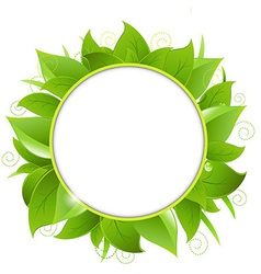 Frame from green leaves vector
