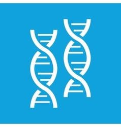 Two dna icon simple vector