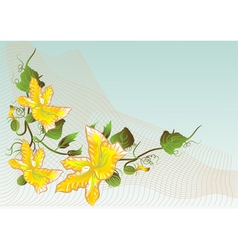 abstract flower of pumpkin vector image
