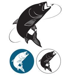 fish chub vector image vector image