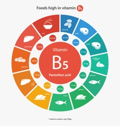 Foods high in vitamin B5 vector image