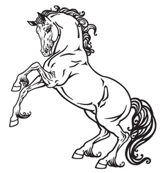 horse monochrome vector image vector image