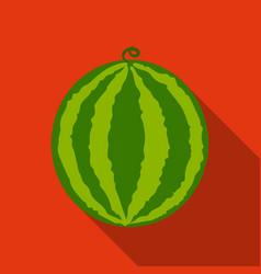 Watermelon icon flat singe fruit icon vector