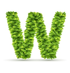 Letter w alphabet of green leaves vector