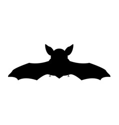night bat vector image