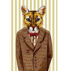 Puma in a jacket vector