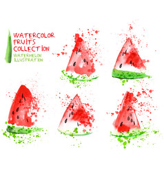watermelon slice set watercolor hand draw vector image