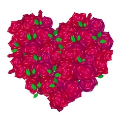 heart made from roses vector image