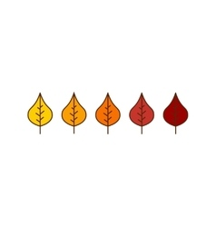 Autumn birch leaves icons vector