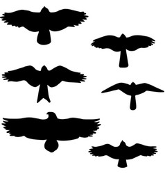 set of black isolated silhouettes of birds vector image