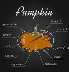 Nutrient list for pumpkin vector
