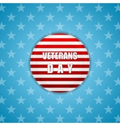 Abstract bright Veterans Day background vector image vector image
