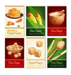cane sugar vertical cards vector image