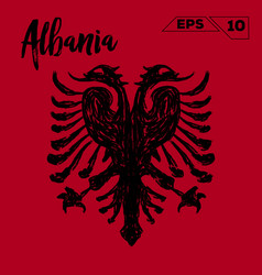 Albania flag brush strokes painted vector