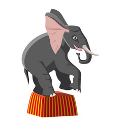 Circus elephant icon cartoon style vector