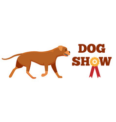 dog show award with ribbon canine animal design vector image