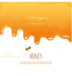 Dripping honey background with copy space for your vector