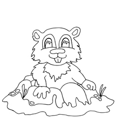 High quality chipmunk drwan in outline for vector image