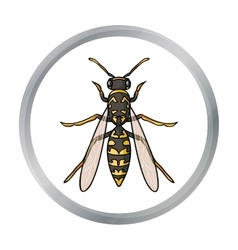 Wasp icon in cartoon style isolated on white vector