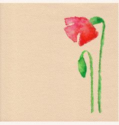 Watercolor poppy flower vector