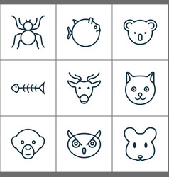 Animal icons set with kitten baboon seafood vector