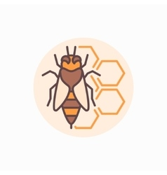 Bee with honeycomb flat icon vector