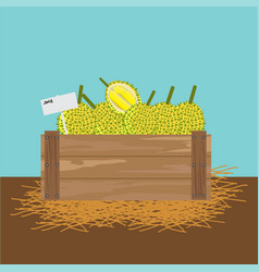 Durian in a wooden crate vector