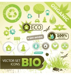 eco concept elements vector image