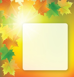 School board on colorful background vector
