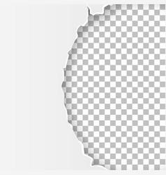 Torn paper2 vector