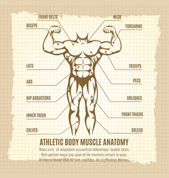 Vintage poster with athletic body infographics vector