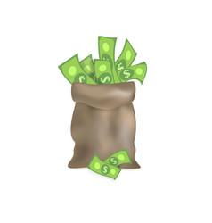 flat cartoon big bag with dollar cash vector image