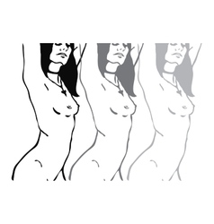 Sketch of three naked woman torso vector