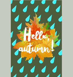 Hello autumn poster with drops of rain and fallen vector