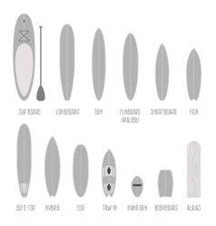 Set of surfboard types volume shapes in scale vector image