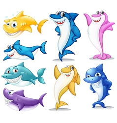 A group of colorful sharks vector